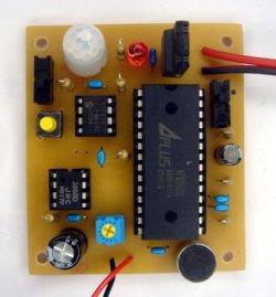 画像1: 音声合成付き人体検知 完成品